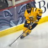 Quinnipiac women's hockey vs Dartmouth 12/4/15