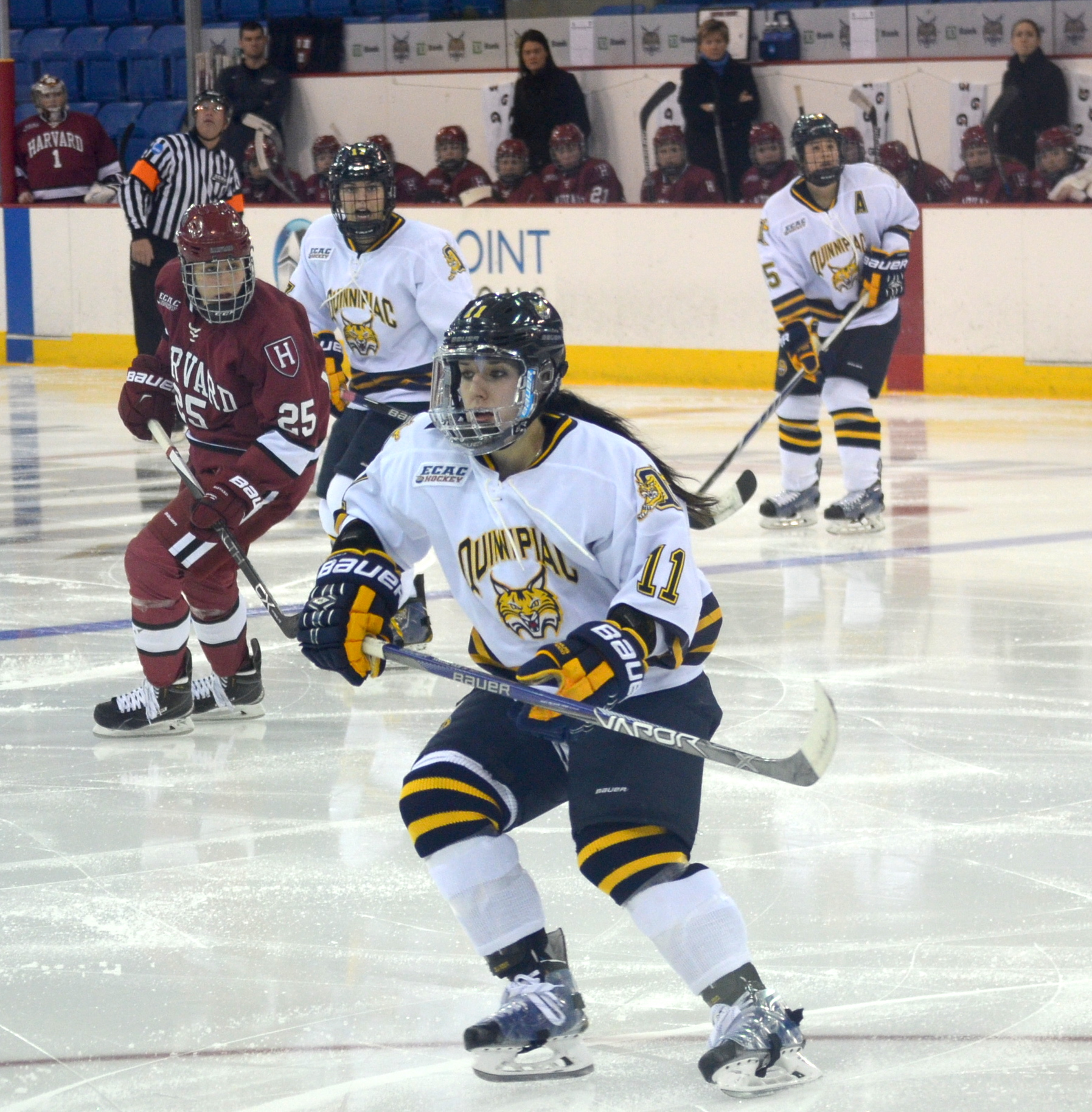 Jordan Novack|Quinnipiac Chronicle Melissa Samoskevich forechecks the Harvard defense 12/5/15