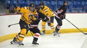 Quinnipiac women's hockey vs Princeton 11/13/15